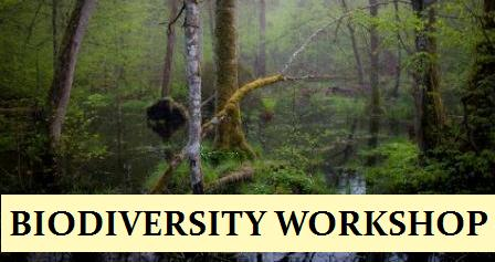 BIODIVERSITY WORKSHOP